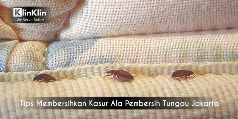 Tips Membersihkan Kasur Ala Pembersih Tungau Jakarta