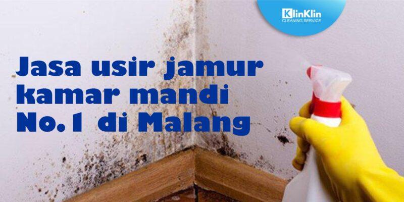 Jasa Usir Jamur Kamar Mandi No. 1 di Malang
